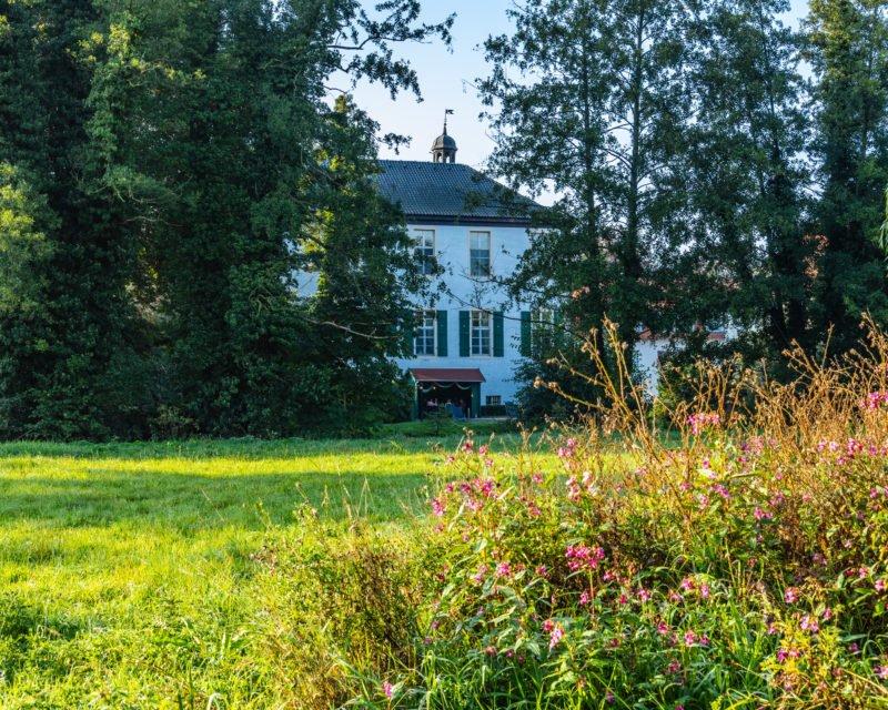 Herrenhaus Proebsting See Borken mit Wildblumenwiese