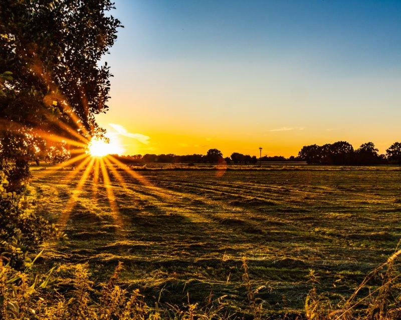 Panorama Sonnenuntergang in den Rhader Wiesen Dorsten