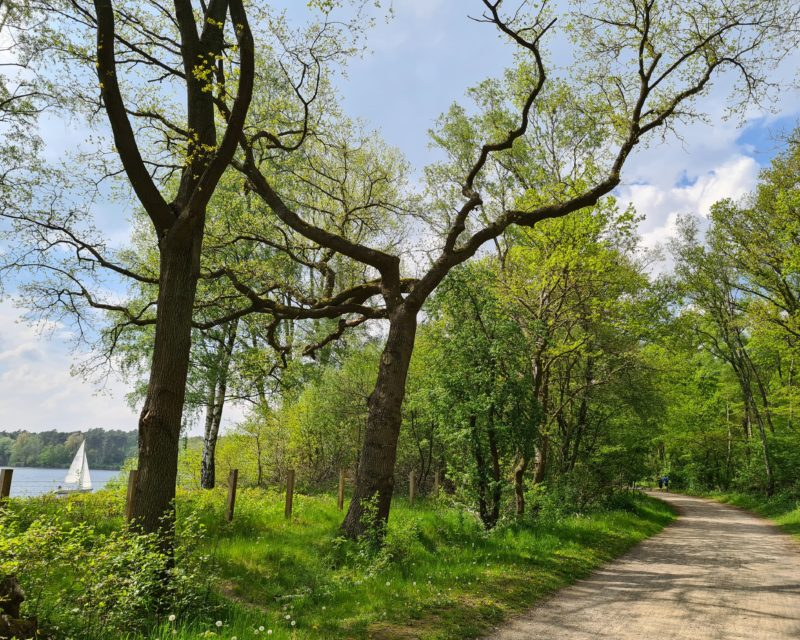 gut fahrbarer Radweg mit Seeblick im Norden des Halterner Stausee Hohe Mark RadRoute