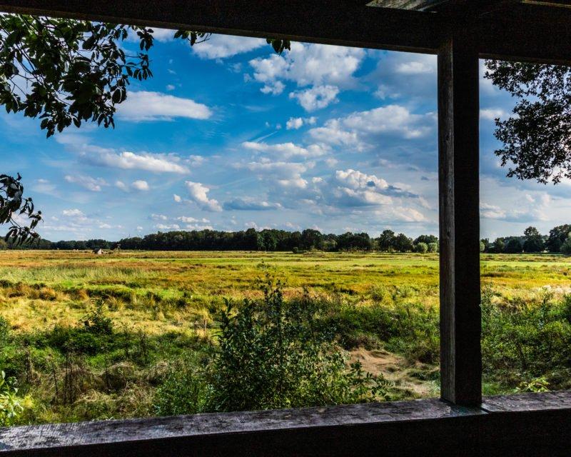 Ausblick aus Kanzel auf Feuchtwiesen des Naturschutzgebietes Dingdener Heide