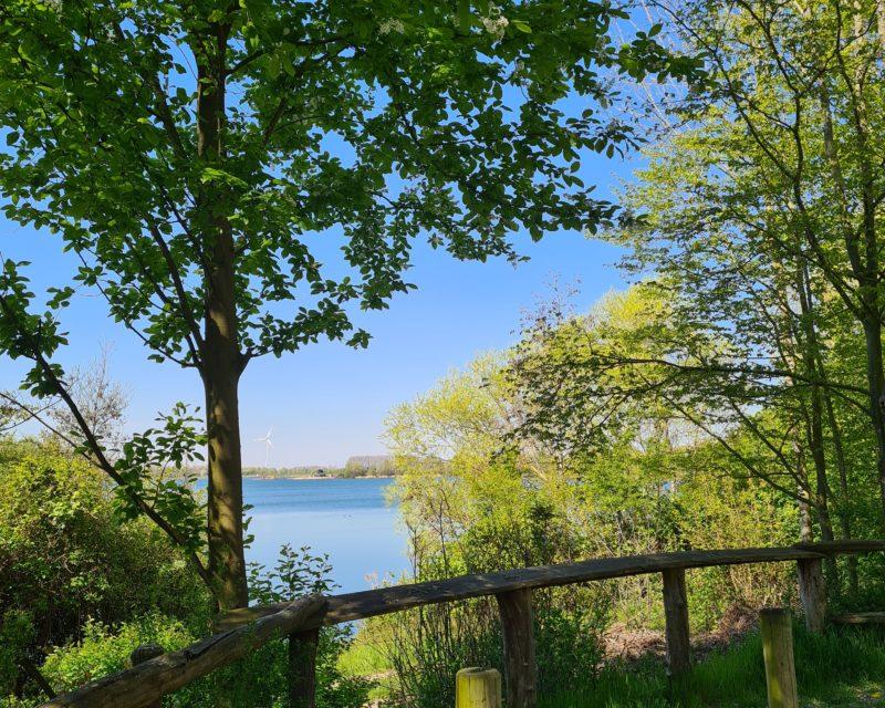 Uferblick auf Baggersee bei Sonnenschein Hamminkeln Niederrhein Radtour Tagestour