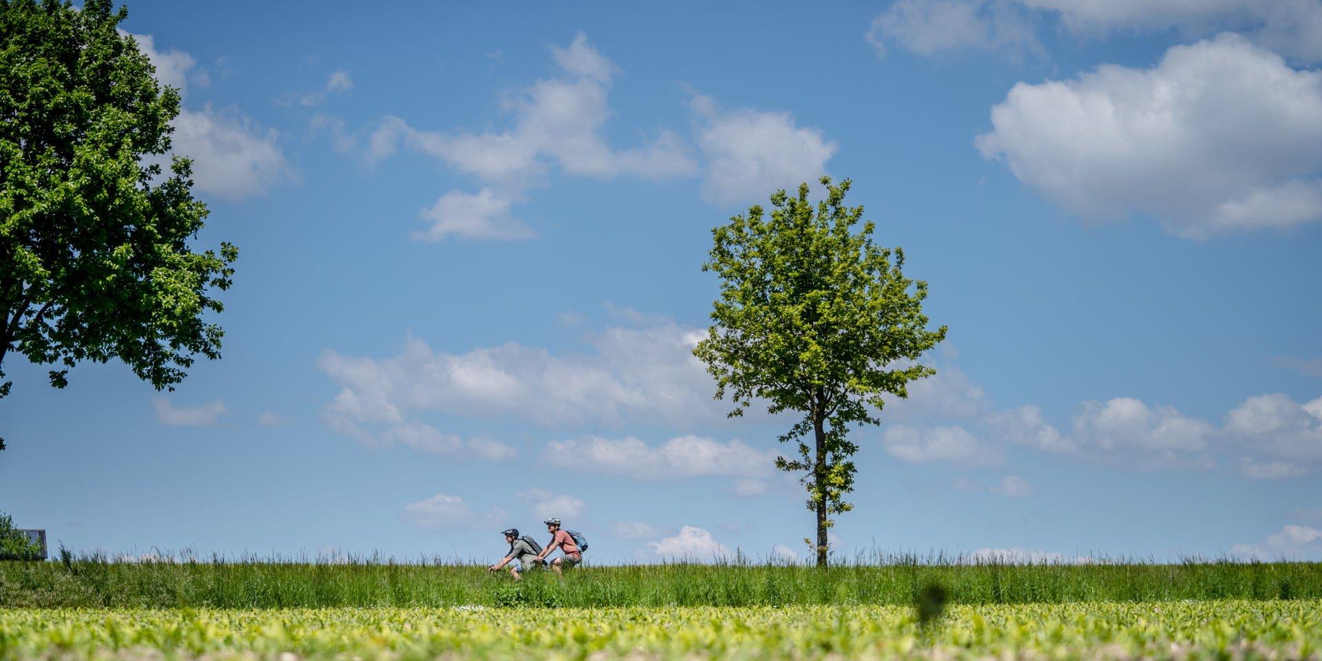 Radtour zwischen Feldern im Muensterland auf Hohe Mark RadRoute
