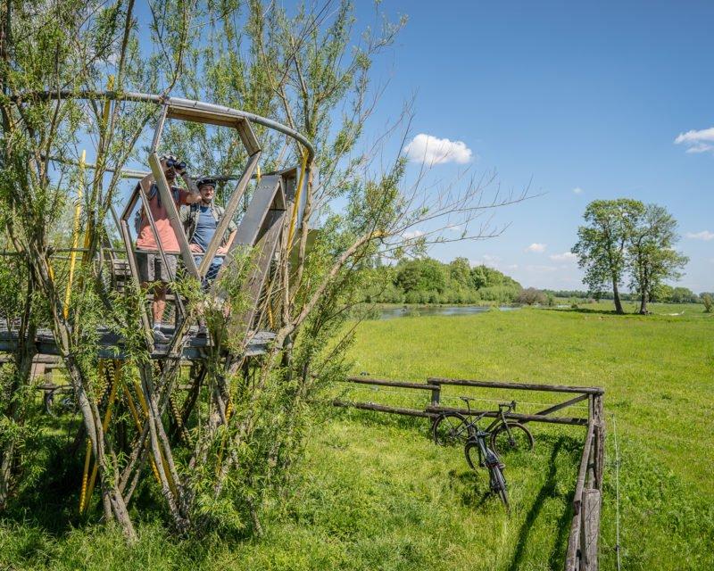 Baubotanik Aussichtspunkt zur Tierbebachtung auf der Hohe Mark RadRoute in Olfen